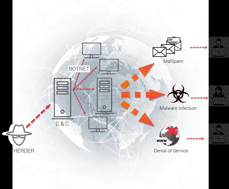 Anatomy of a botnet